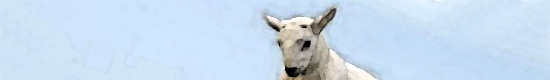 ico-lamb